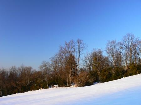 Scènes d'hiver dans les Alpes - scènes d'hiver dans les Alpes, France Banque d'images - 49265687