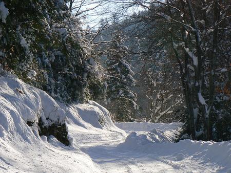 Scènes d'hiver dans les Alpes - scènes d'hiver dans les Alpes, France Banque d'images - 49265690