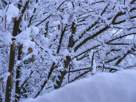 Scènes d'hiver dans les Alpes - scènes d'hiver dans les Alpes, France Banque d'images - 49265694