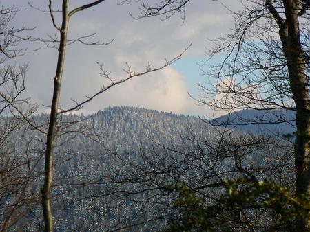 Scènes d'hiver dans les Alpes - scènes d'hiver dans les Alpes, France Banque d'images - 49265696