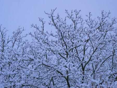 Scènes d'hiver dans les Alpes - scènes d'hiver dans les Alpes, France Banque d'images - 49265697