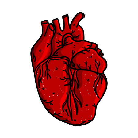 Realistic Black And White Hand Drawn Human Heart Sketch Royalty Free