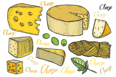 Hand drawn Cheese vector set engraving illustration. Other types of milk cheese slice. Colorful food isolated on white background. Fat organic bio farm food set engraved collection.