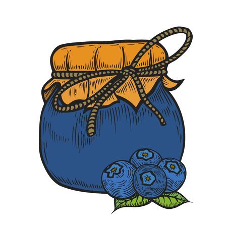Colored Hand drawn blueberry jam jar Ink hand drawn vector illustration. Harvest autumn illustration. Engraved organic food sketch illustration. Isolated on white background.