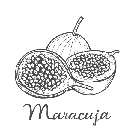 Hand drawn Maracuja passion fruit, bunch. Organic nutrition healthy food. Engraved exotical hand drawn vintage retro vector maracuja illustration. Tropical fruit Isolated on white background