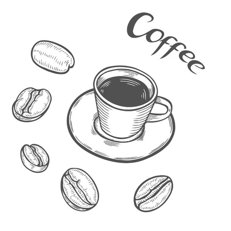 Hand drawn sketch cup of coffee with beans. Natural organic caffeine. Green coffee, luwak. White on black background. Vector illustration coffe. Ilustração