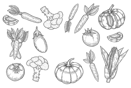 Farmers market badge. Monochrome vintage engraving organic vegetables, wheat and fruits sign isolated on white. Sketch vector hand drawn illustration. Pumpkin, tomato, eggplant