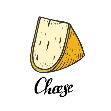 Yellow Hand drawn Ink Cheese vector engraving illustration. Isolated on white