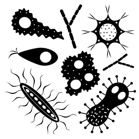 Set of various amebas and microbes. Vector illustration
