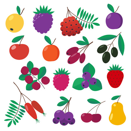 Set of fruits and berries at flat design