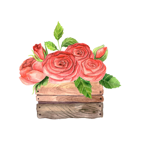 wood crate: Hand painted watercolor roses in wooden crate. Floral wooden box perfect for wedding invitation and cards. Stock Photo