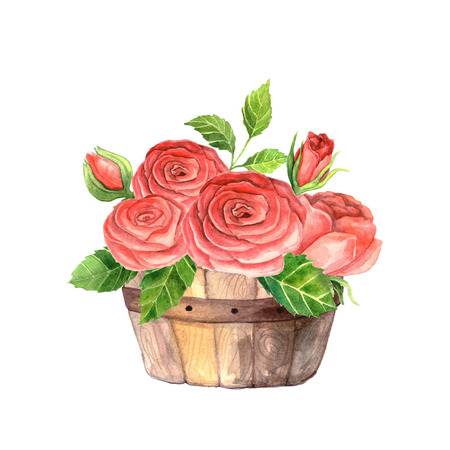 Hand painted watercolor roses in wooden crate. Floral wooden box perfect for wedding invitation and cards. Stock Photo