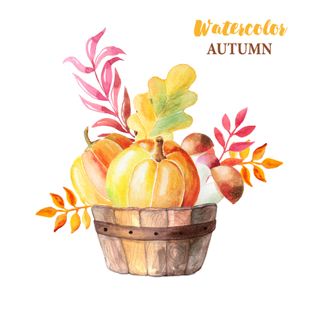 Watercolor hand painted orange pumpkins, mushrooms and branches in wooden basket. Autumn nature composition isolated on white. Perfect for card making