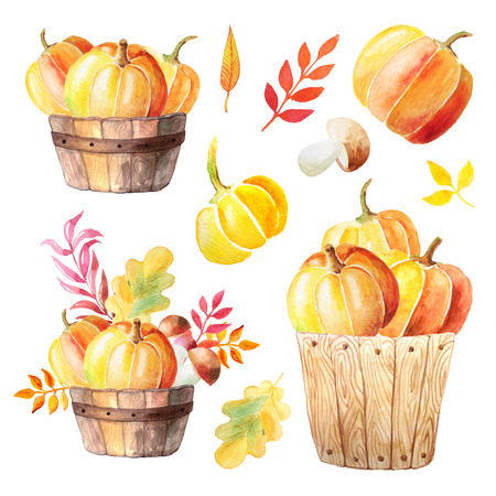 Watercolor hand painted orange pumpkins, mushrooms and branches in wooden baskets. Autumn nature set of elements isolated on white. Perfect for card making Imagens - 84218516