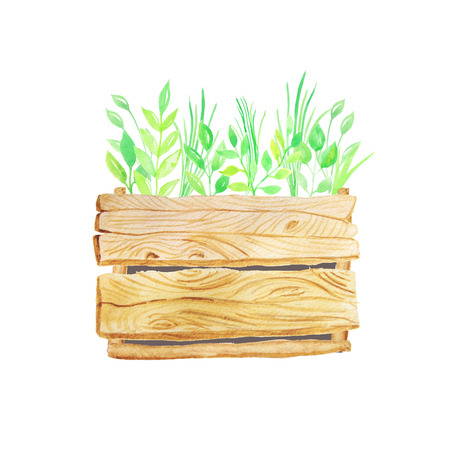 Hand painted watercolor green leaves and grass in wooden crate. Eco nature wood box perfect for wedding invitation and card making Stock Photo