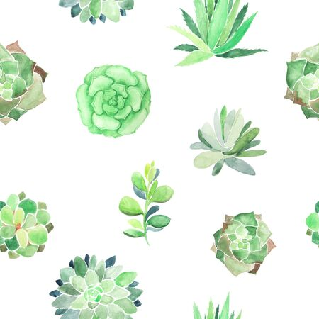 Watercolor seamless pattern with different succulents and plants on white backdrop. Home decor background with colorful vibrant hand painted agave and aloe flower