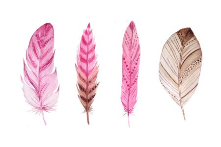 Set of isolated exotic watercolor feathers. Hand painted  colorful delicate feather clipart.