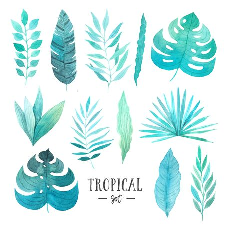 Watercolor hand painted exotic tropical leaves and plants collection. Green jungle foliage clip art perfect for summer wedding invitation and party card making