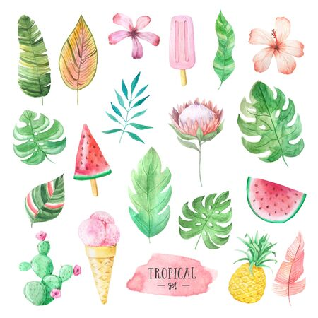 Set of Watercolor hand painted tropical flowers, leaves, fruits and icecream. Bright jungle exotic clip art perfect for summer wedding invitation and party card making Reklamní fotografie