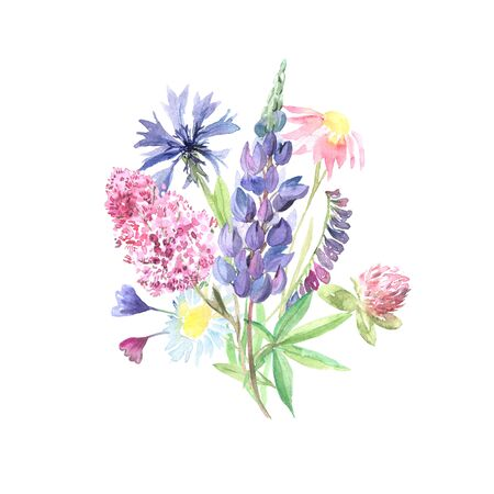 Watercolor hand painted wildflowers, field plants, garden herbs, delicate leaves and branches, wild meadow flowers and grass isolated on white. Modern watercolor style floral collection Stock Photo