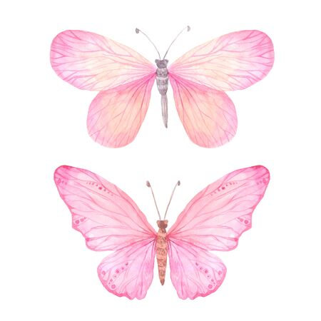 Set of pink bright watercolor butterflies isolated on white. Hand painted exotic butterflies design perfect for wedding invitations and card making Stock Photo