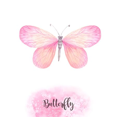 Pink bright watercolor butterfly solated on white. Hand painted exotic butterfly design perfect for wedding invitations and card making Stock Photo