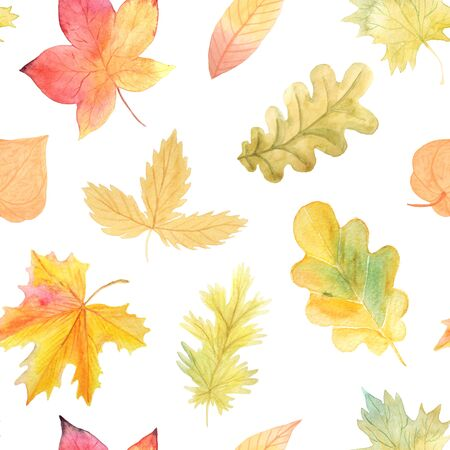 Watercolor Autumn Seamless Pattern. Background with hand painted leaves.  Romantic floral wallpaper Perfect for card making and scrapbooking