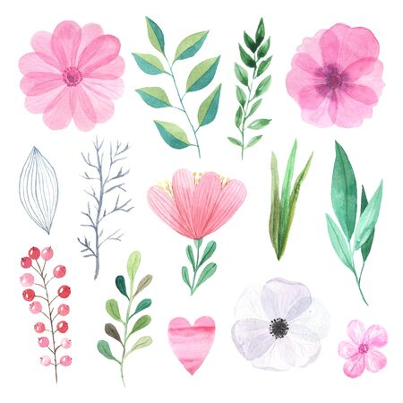 Watercolor hand painted wildflowers, field plants, garden herbs, delicate leaves and branches, wild meadow flowers isolated on white. Modern watercolor style floral collection Banco de Imagens