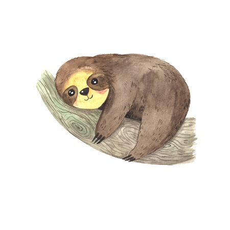 Watercolor hand painted cute sloth hanging on the tree. Cartoon little baby animal illustration in lazy style. Isolated simple character for greeting card, invites, poster, banner, print; nursery Stock fotó