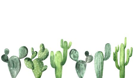 Watercolor hand painted exotic green cactus collection. Set of tropic succulents and flowering plants. Mexican style background template Banco de Imagens