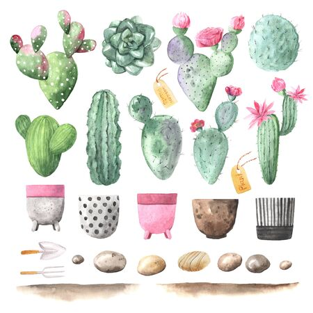 Watercolor hand painted exotic cactus set with pink flowers and flowering pots. Tropic succulents and flowering plants. Mexican style clipart perfect for wedding invitatoin and botanical print Banco de Imagens