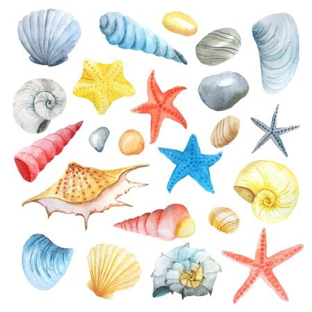 Watercolor set of sea life isolated on white background. Collection of colorful hand painted seashells, stones and stars inspired by travel and vacations