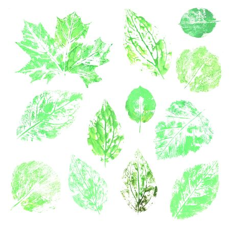 collection of green ink printing leaves isolates on white background.  Spring greenery florals elements imprint by hand. Modern handmade design set perfect for seasonal design project