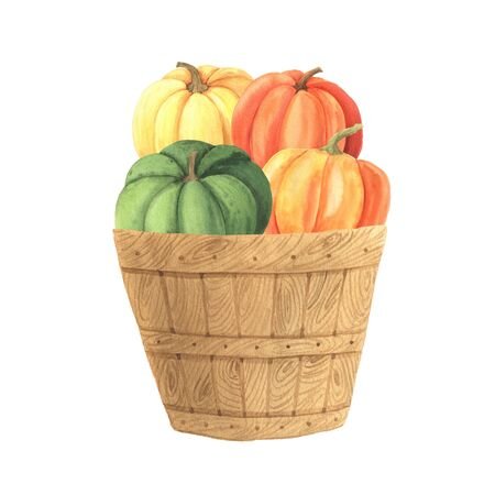 Watercolor hand painted orange pumpkins in wooden basket. Autumn nature composition isolated on white. Perfect for card making and skrapbooking Reklamní fotografie