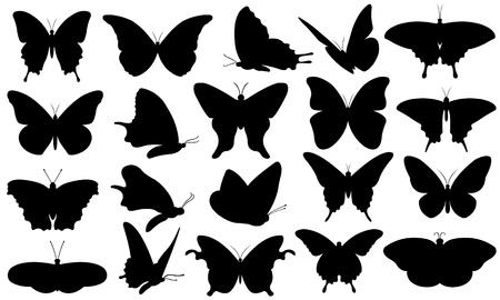 蝶のコラージュ  イラスト・ベクター素材