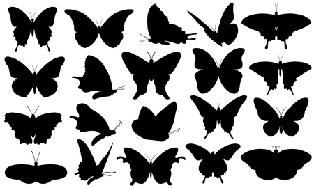 silhouette papillon: butterflie collage