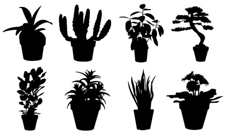 potted plants set Vector