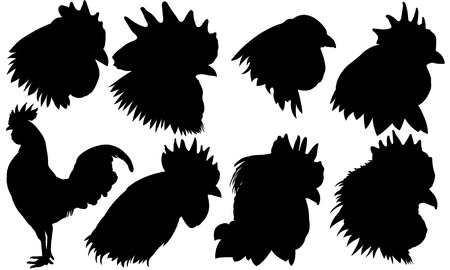 cockscomb: set of rooster heads isolated