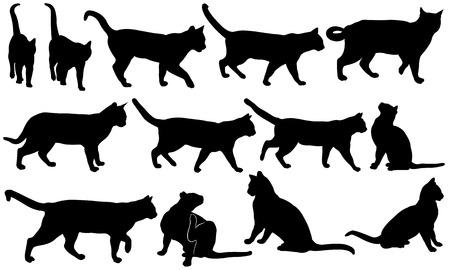 silhouette chat: ensemble de différents chats isolés Illustration