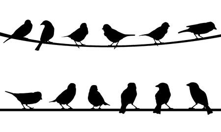 bandada pajaros: aves en alambre Vectores