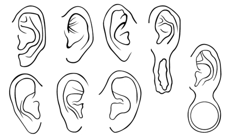 pierce: Set of different ears isolated on white Illustration