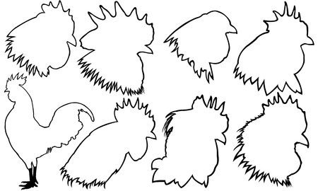 cockscomb: Set of rooster heads isolated on white Illustration