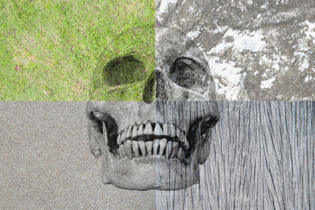 human factors: abstract symbol idea, The different four factors of human life, Human skull in the four different background,grass rock, wood, cement. The different four factors No1. 2016