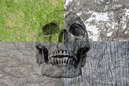 human factors: abstract symbol idea, The different four factors of human life, Human skull in the four different background,grass rock, wood, cement. The different four factors. No.3 2016