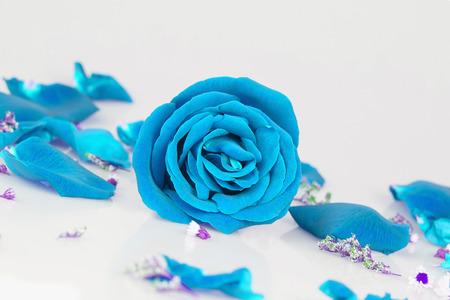 vehement: Dye super blue rose with  Rose petals