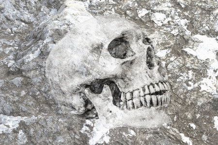 no1: Abstract symbol idea,Life No.1, Side view of human skull in rock background Life No.1 2016 Stock Photo