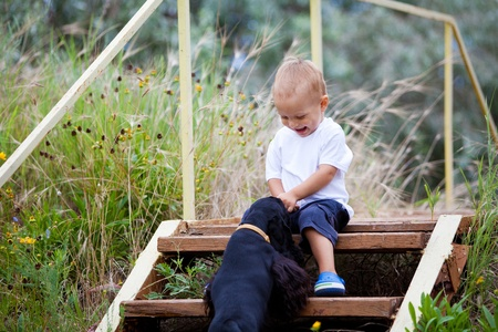 A child in the garden with dog Stock Photo