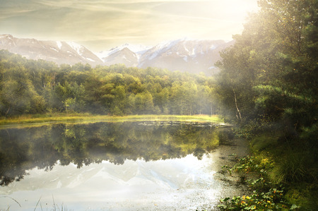 biotope: Beautiful Lake