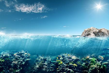 prachtige onderwater, australië Stockfoto