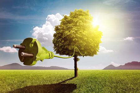 Tree with plug